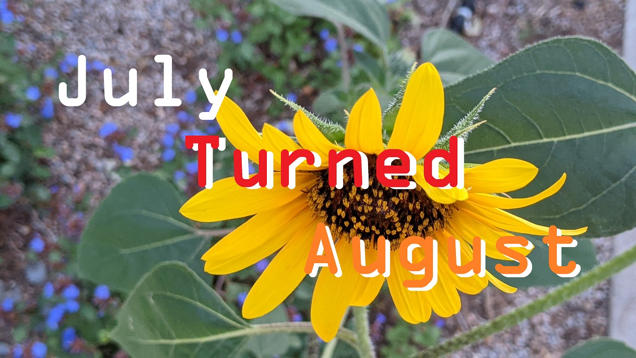 july turned august 2021 sparktwaineth